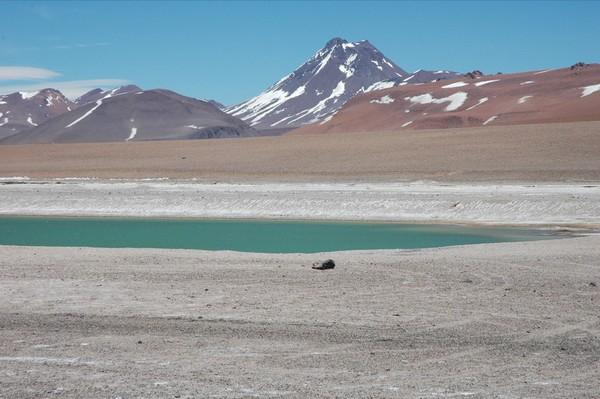 Acamarachi Pool